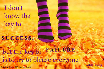 I don't know the key to success, but the key to failure is to try to please everyone - Bill Cosby.  Nikki Schwartz at Spectrum Psychological.net
